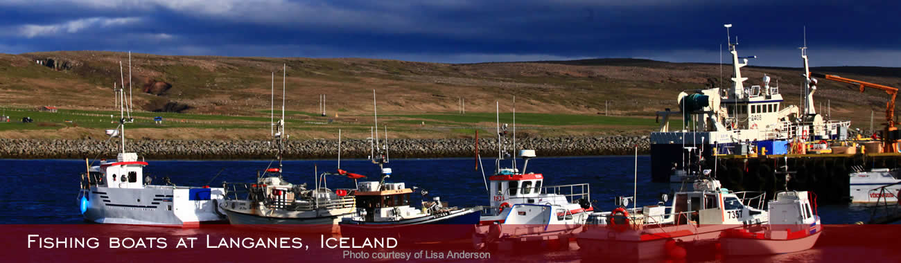 Fishing boats at Langanes, Iceland